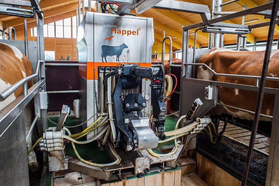 Aktiv Puls Robot von Happel