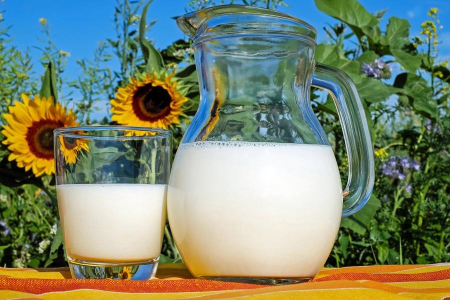 Milch hat wertvolles Eiweiß!