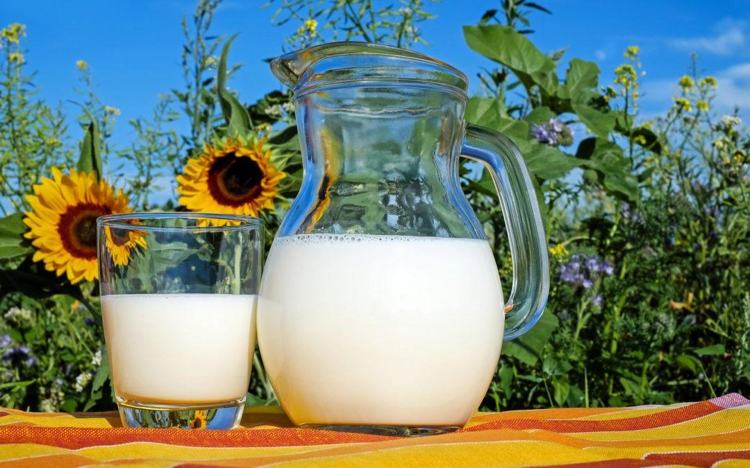 A2-Milch Studien hinterfragen